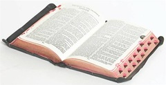 Bible (Small)